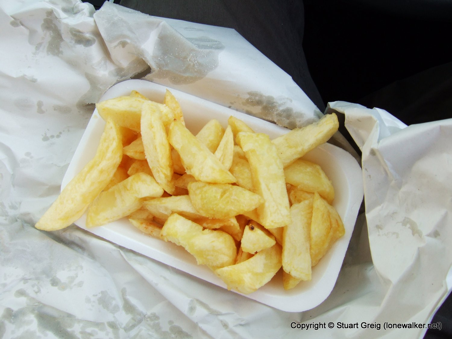 Ridiculously small portion of very expensive chips!!