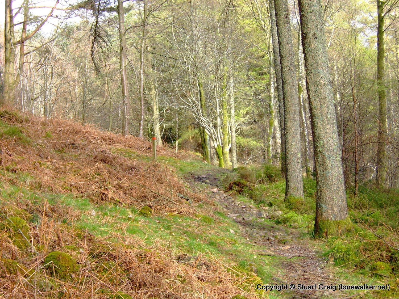 Ennerdale walking weekend