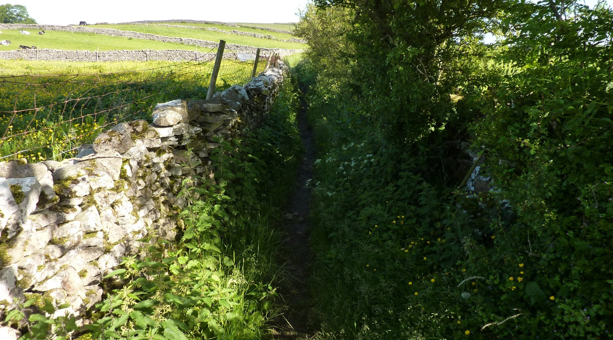 Narrow paths from Shap to Keld