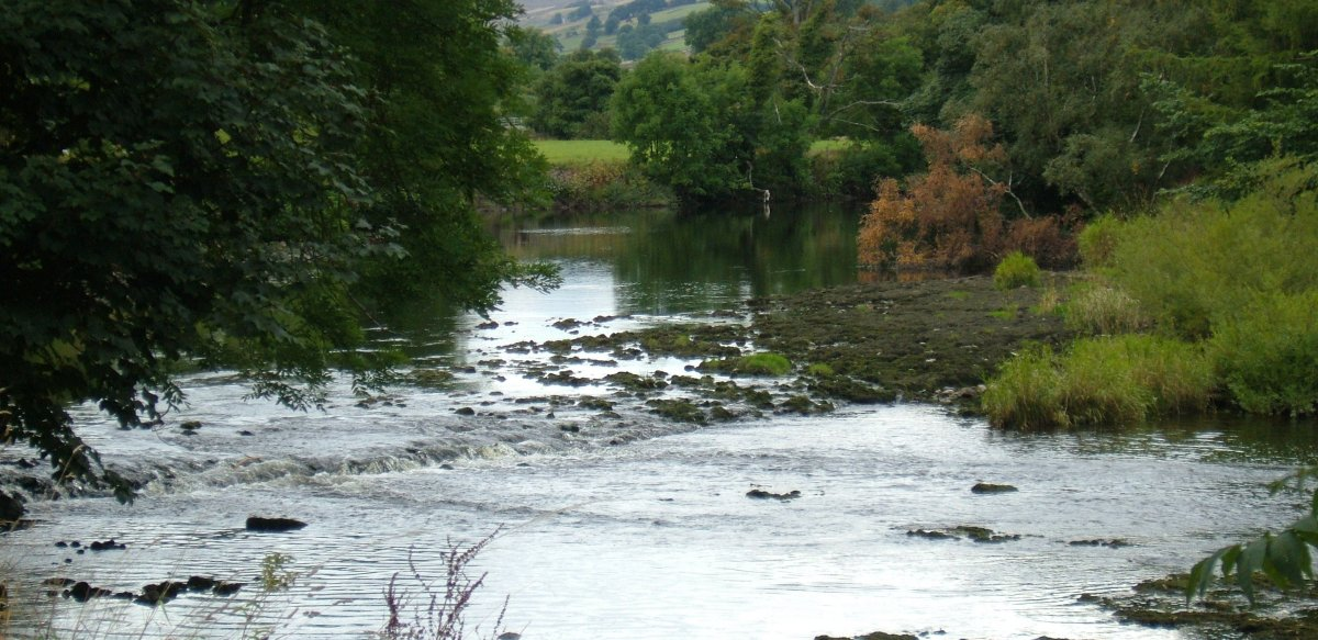 The River Ure as it approaches Aysgarth