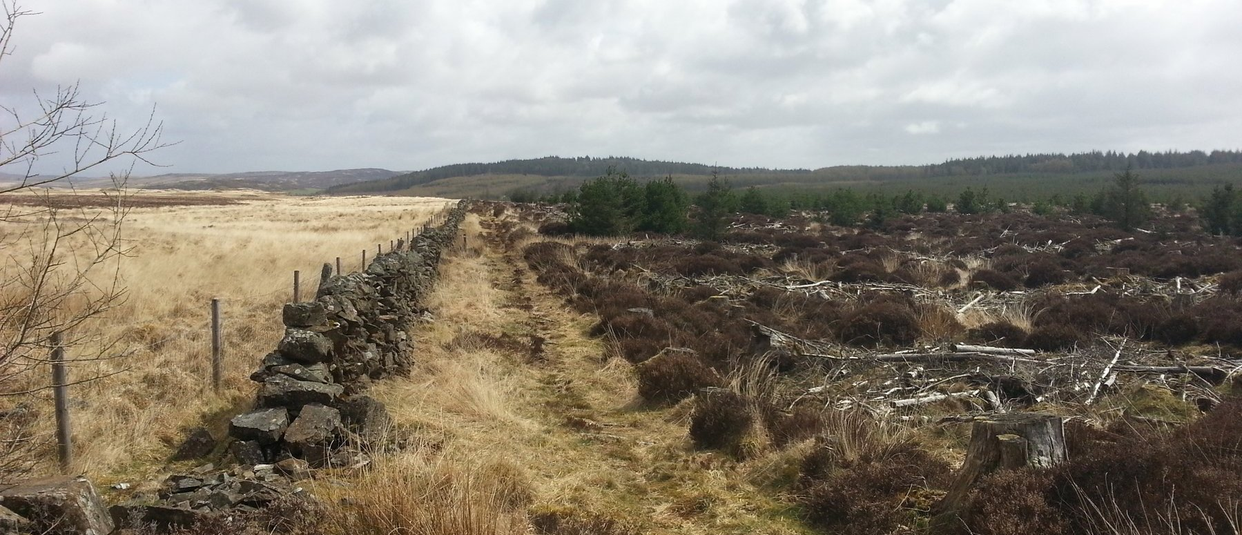 The path round Glenwhan Moor