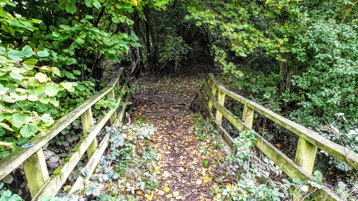Bridge across a tributary of the Nidd