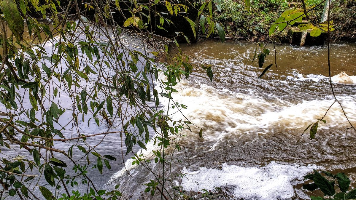 Weir in the River Nidd