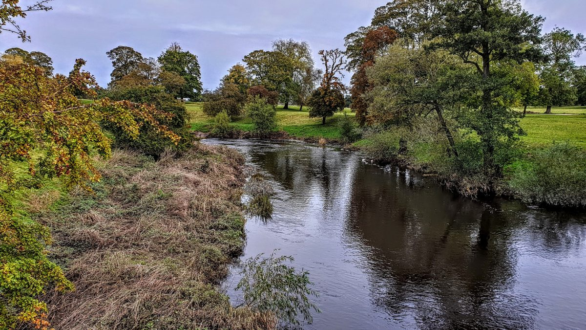 River Nidd in Ribston Park