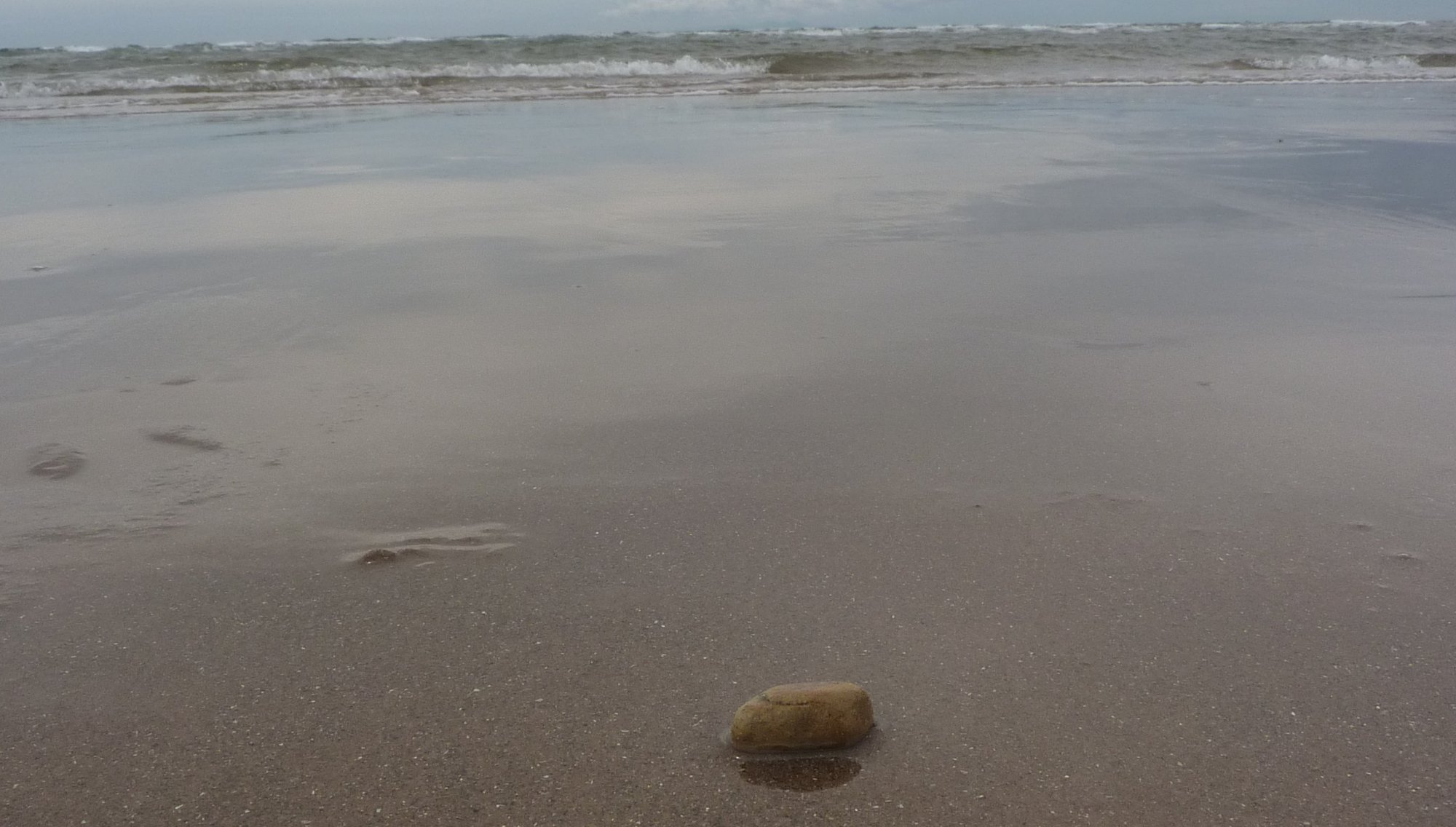 Pebble released into the Irish Sea