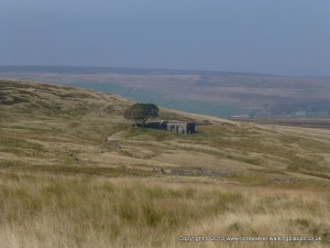 Ruins at Top Withins