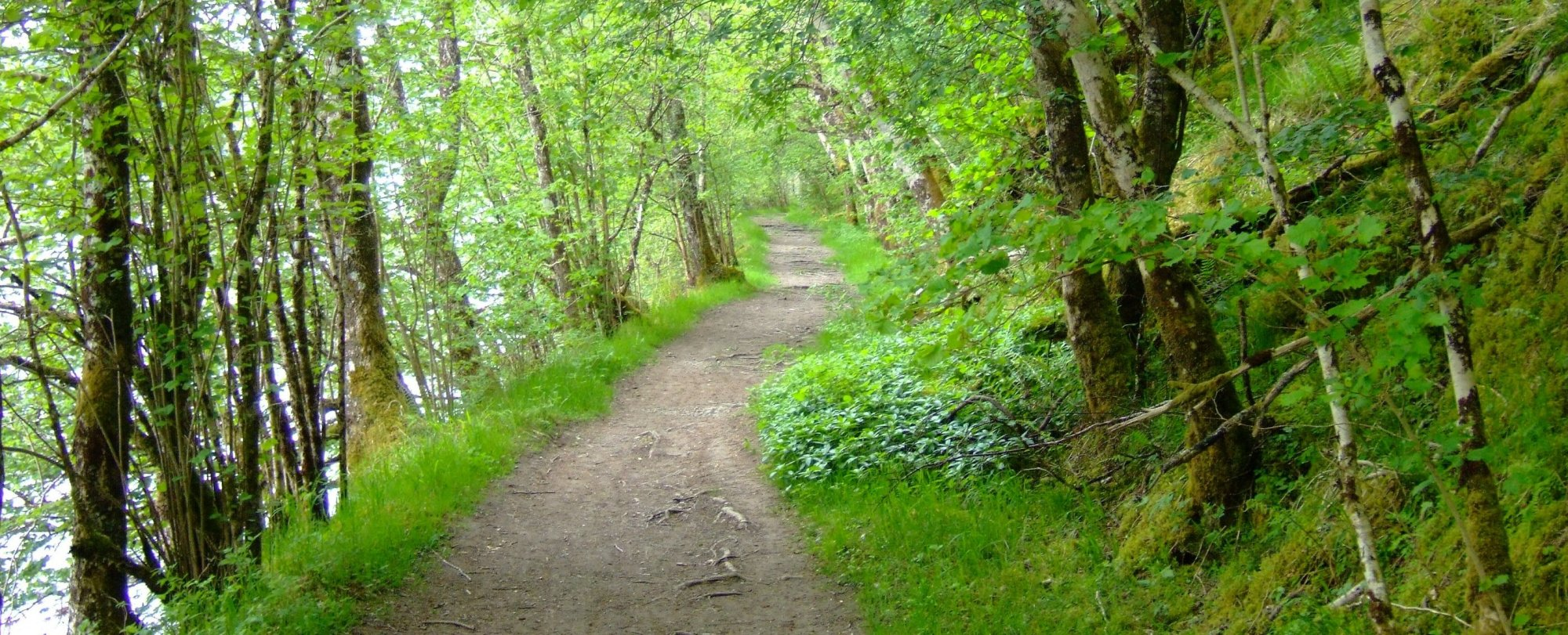 The path beside Loch Oich