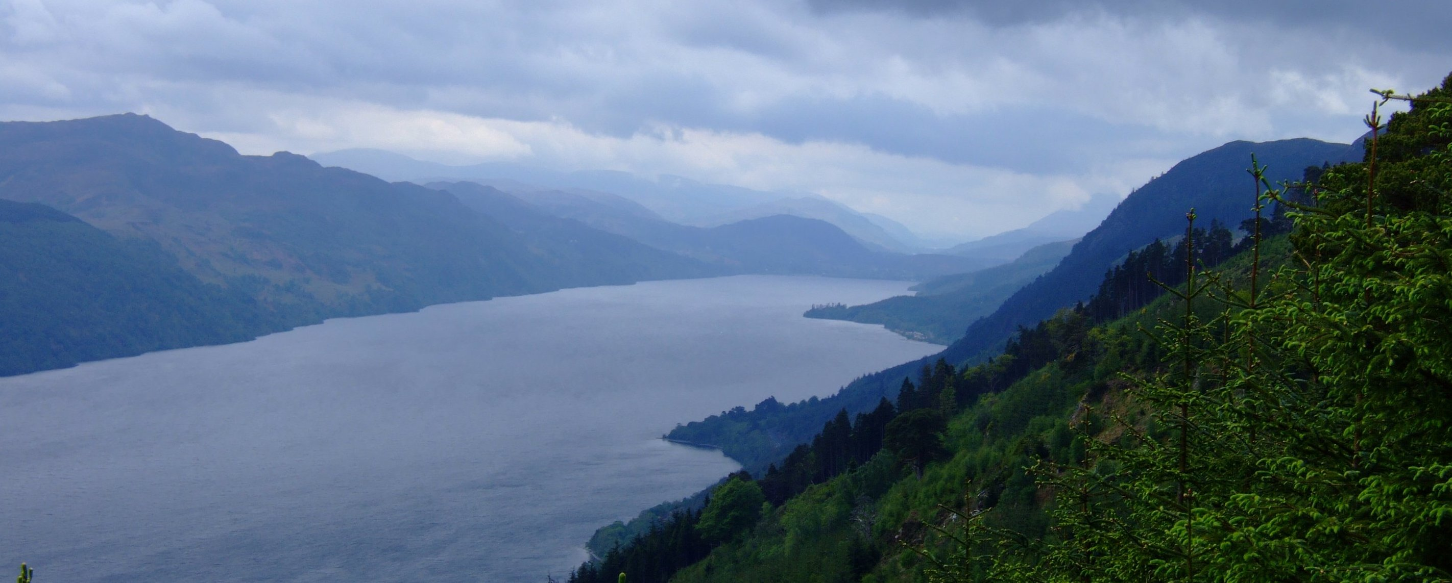 The view back down Loch Ness from the forestry road