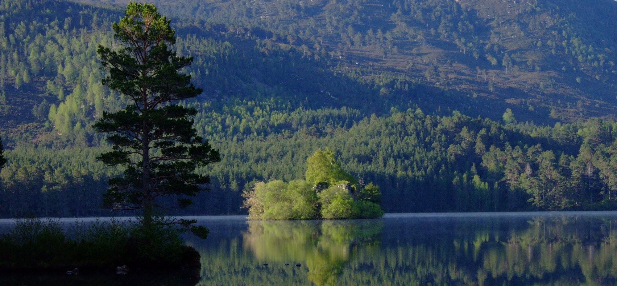 Loch an Eilein with the castle on the island