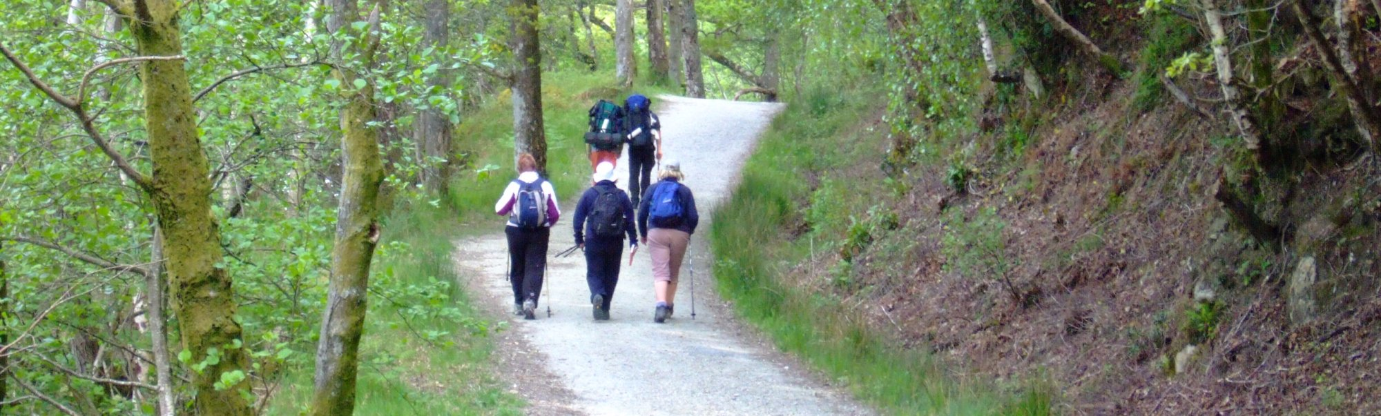 The crowded path on Day 3 from Rowardennan