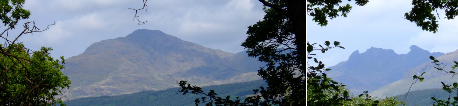 Brief glimpses through the trees of the mountains on the western side of Loch Lomond