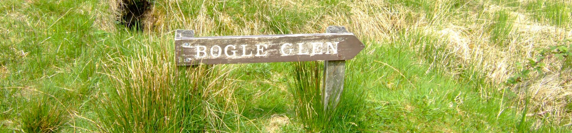 6No reason for this picture - just a great name for a Glen - this one's for Tex Gore!