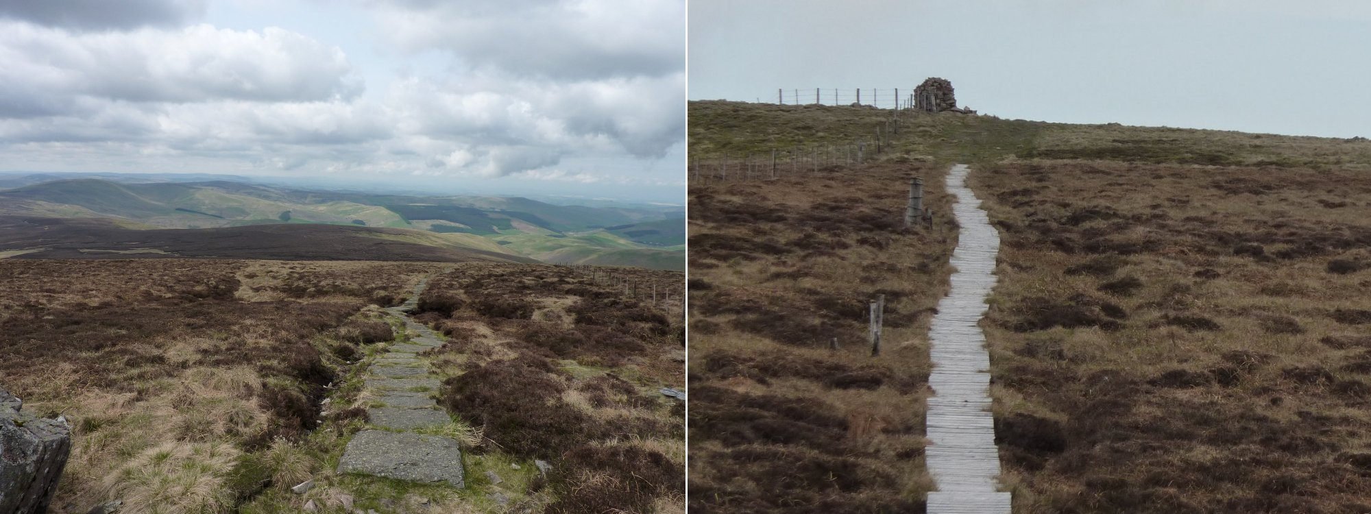 Left to Right: Looking back along the path from the turn to The Cheviot,     Duckboards over the peat