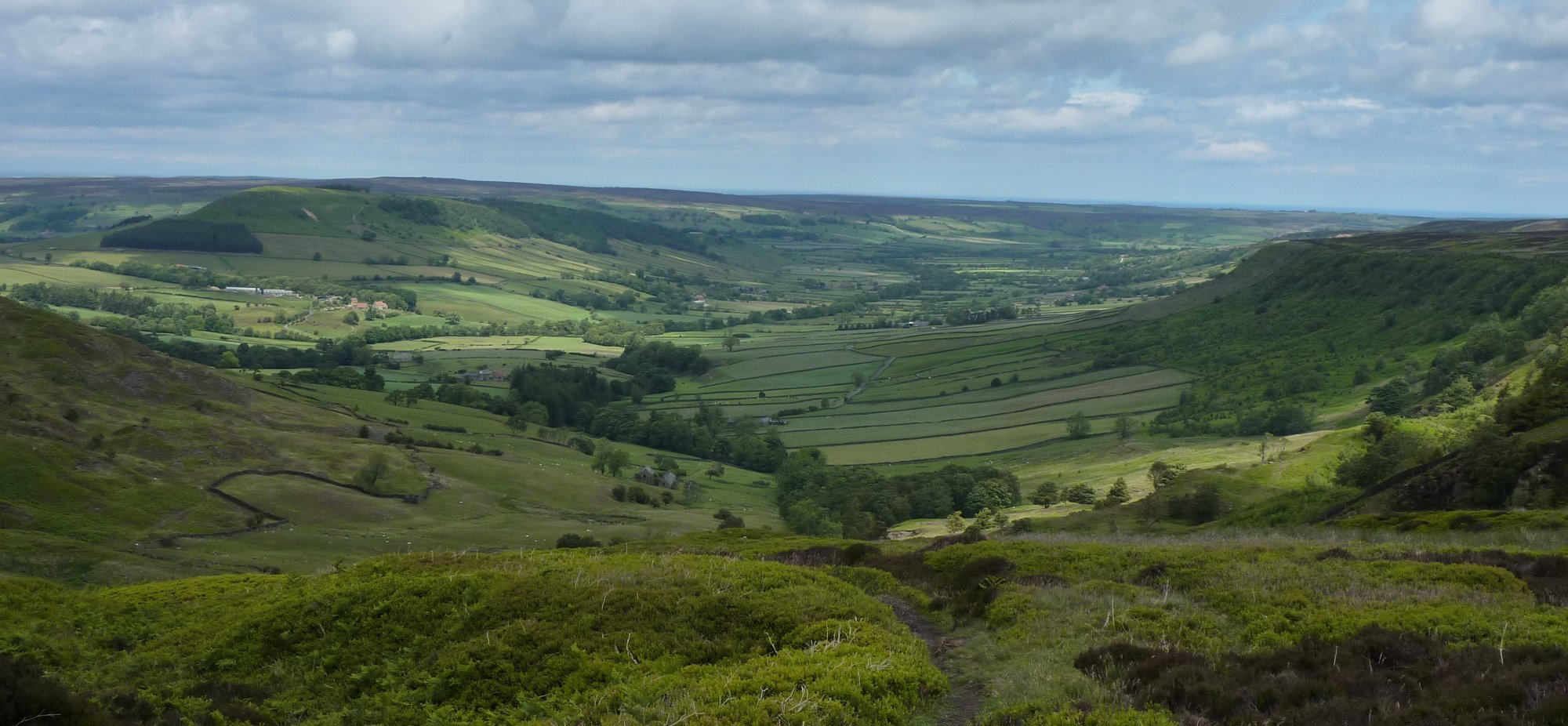 Looking down into Great Fryup Dale