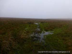 Bogs, bogs and more bogs, on Cotherstone Moor