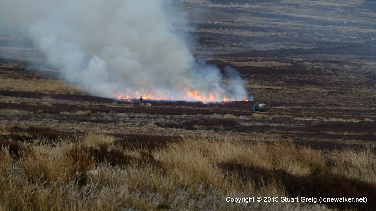 Burning Heather on Grinton Moor