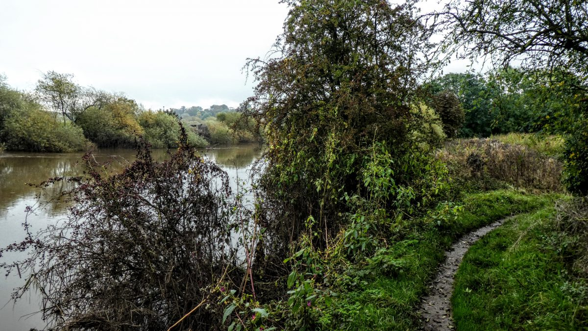Nice path beside the Ouse